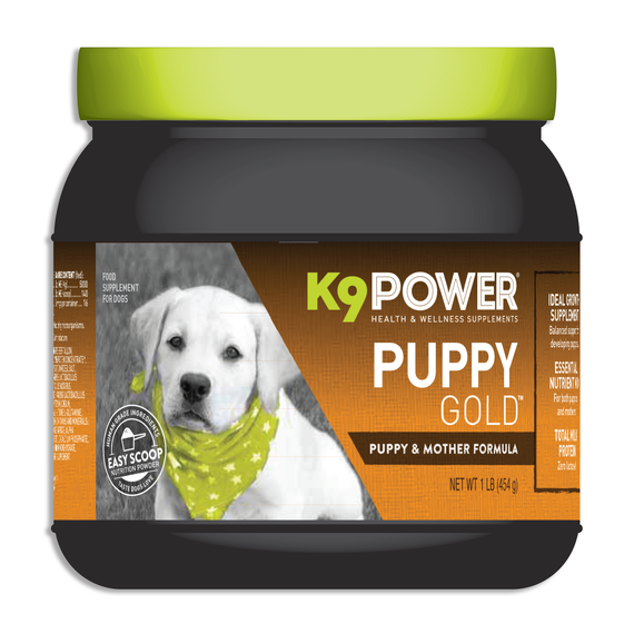 K9 Power Puppy Gold - DogSports4u