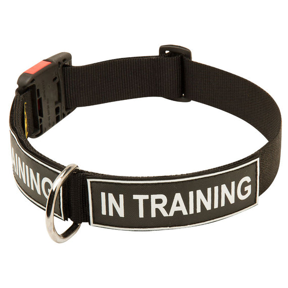 All Weather Nylon Dog Collar with Patches and Quick Release Buckle - DogSports4u