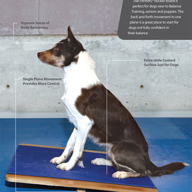 FitPAWS® Giant Rocker Board