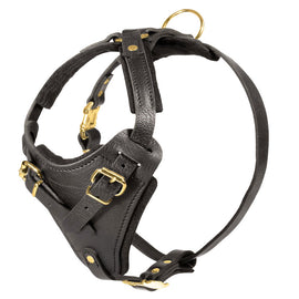 Adjustable Leather Agitation Harness - DogSports4u