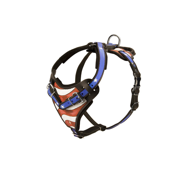 H1AP - Handpainted Leather Dog Harness for Training and Walking - DogSports4u