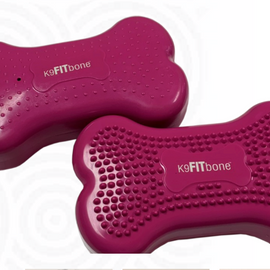 CanineGym® K9FITbone Mini