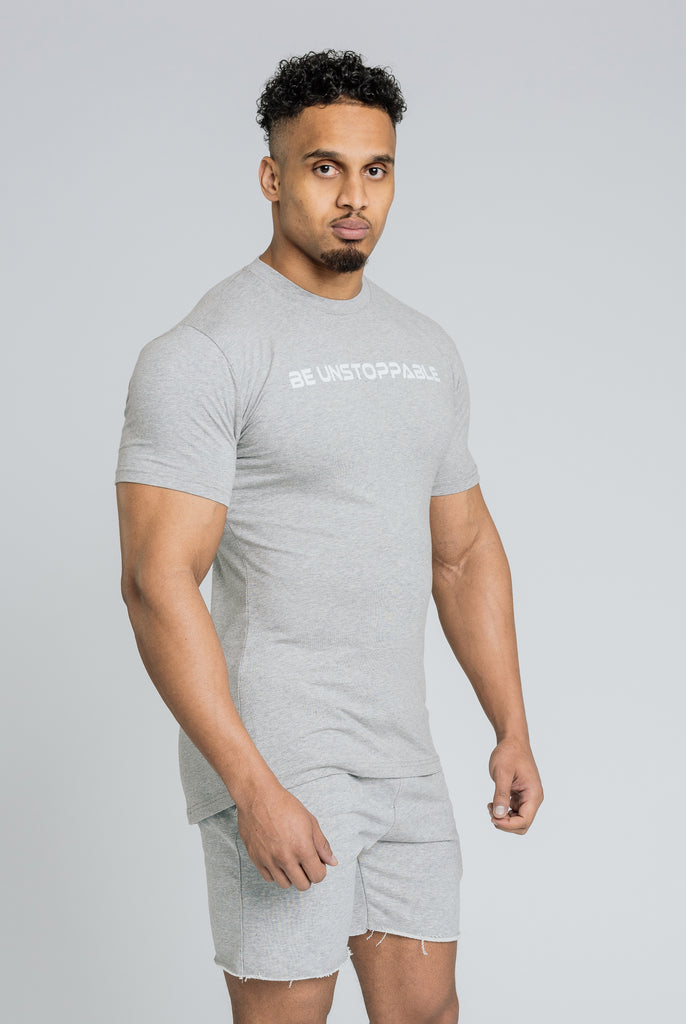 Alpha Banner T-Shirt - Grey