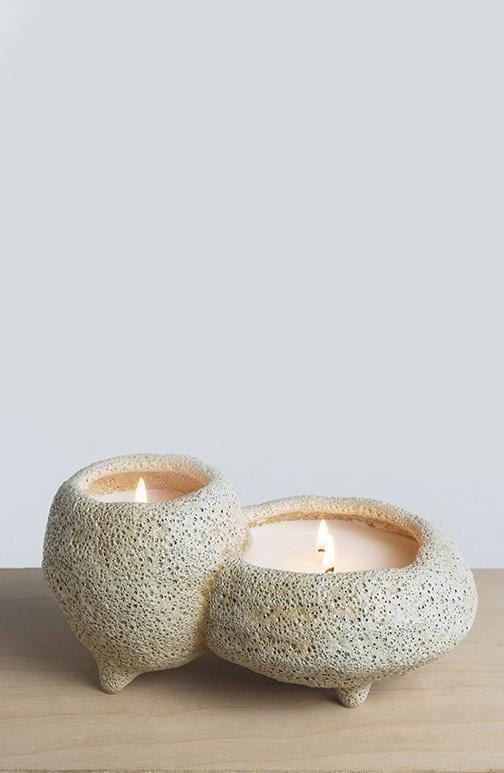 Still Candle | Agave Nectar + Dune Primrose