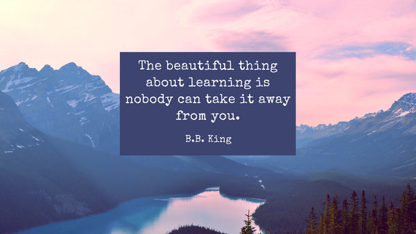 beautiful thing about learning