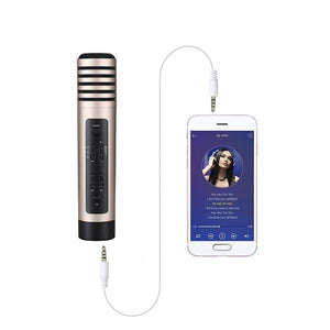 High quality portable karaoke bluetooth microphone - Wilder Party