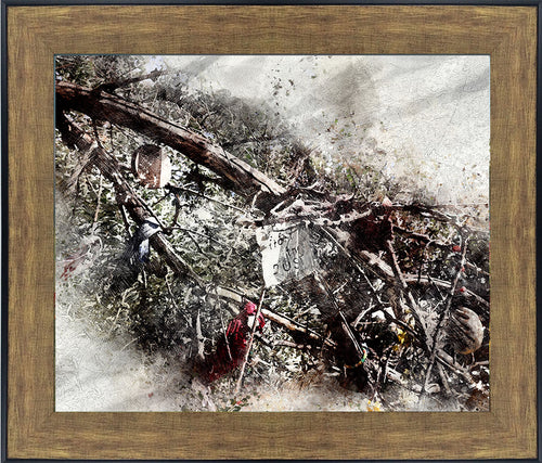FROM THE DUST: THE BEAR RIVER MASSACRE REMEMBRANCE TREE TEXTURE FRAMED PRINT