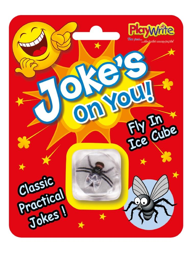 Joke's On You! - Fly Inside Ice Cube - Party Perfecto