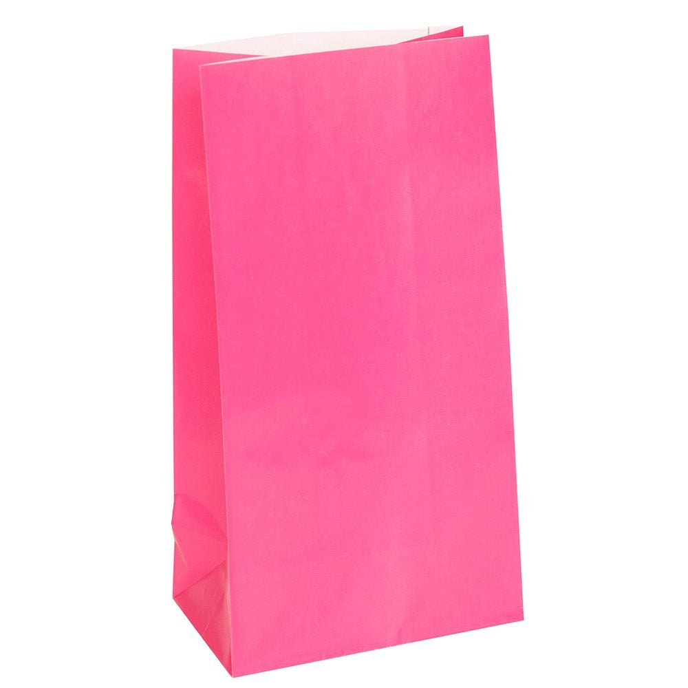 12 Hot Pink Paper Gift Bags - Party Perfecto