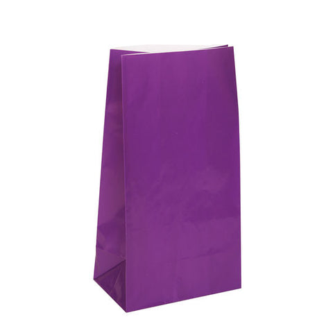 12 Purple Paper Gift Bags