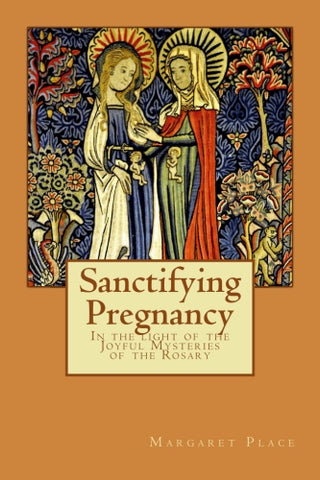Sanctifying Pregnancy - book