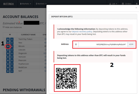 Bittrex Exchange Screenshot with an address of the cryptocurrency wallet