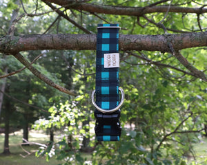 Teal Plaid Collar