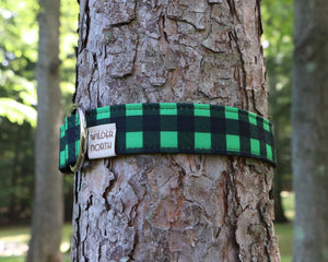 Green Buffalo Collar