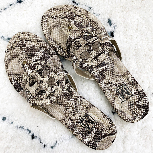 Catie Medallion Sandals: Python - Bella and Bloom Boutique