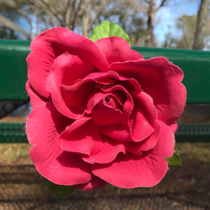 Artisan Crafted Rose Hair Or Scarf Clip
