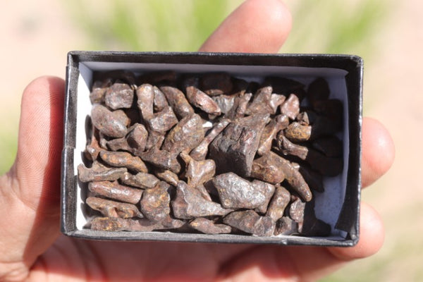 100 small individual Agoudal Meteorites totally 71.1 grams