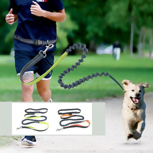 Bungee Dog Leash - Leashes - PurpliKi