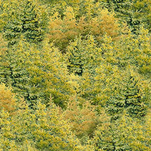 Wild at Heart Trees A/O Green/Yellow 12606-775