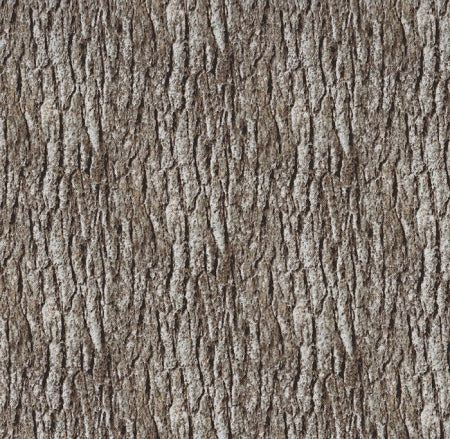 Nature's Glory Bark Wood 1649-23839K