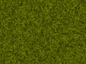 Color Blends Avocado Green Blender Fabric 1649-23528-G from Quilting Treasures by the yard