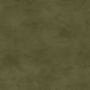 Shadow Play Sage Green Blender Fabric MAS513-G27 from Maywood by the yard