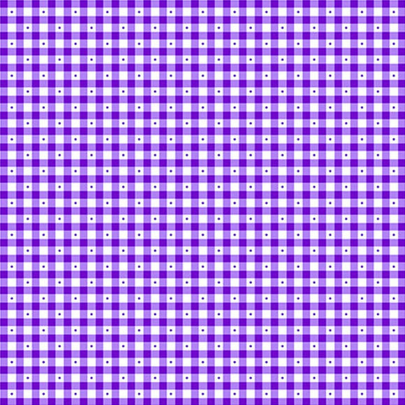 Sorbet Essentials Purple Check Fabric 23691-V from Quilting Treasures by the yard