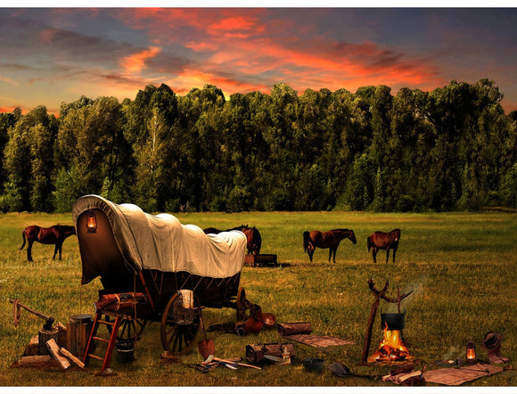 Sun Up to Sun Down Covered Wagon Digital Print S4833-151 from Hoffman by the panel