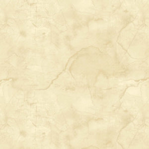 Urban Legend Tan Texture Blender Fabric B7101-41 from Blank by the yard