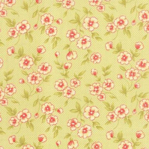 Farmhouse Lime Floral 20255-17 from Moda