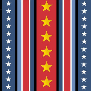 Hugs For Heroes Red/Navy Stripe 22774RN from Quilting Treasures