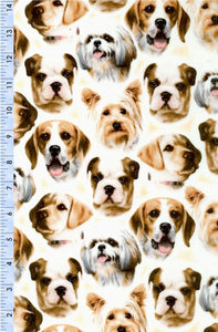 Puppies N' Kittens Dog Print 45621EA from VIP