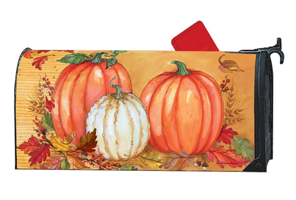 Traditional Pumpkin MailWrap
