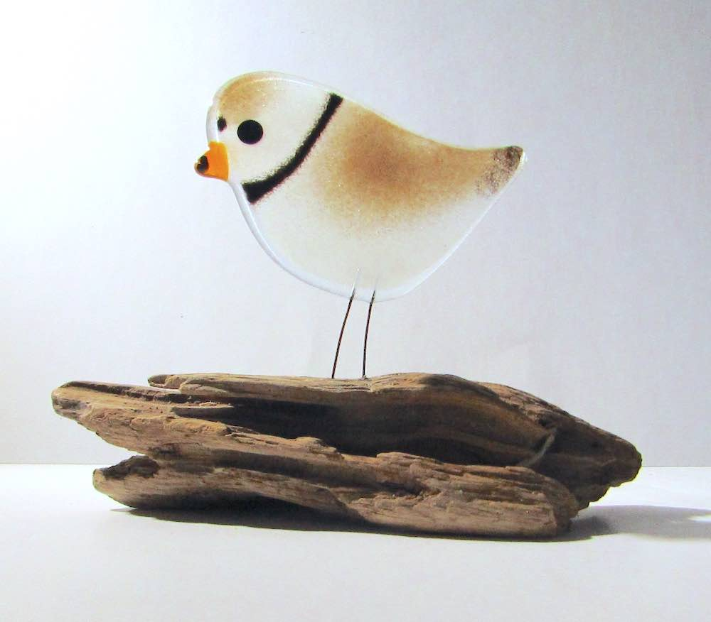 Piping Plover on Driftwood by The Glass Bakery