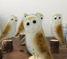 Load image into Gallery viewer, Barn Owls by The Glass Bakery