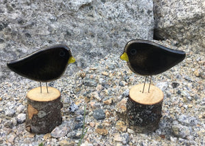 Black Bird Chicks on Live Edge Logs by The Glass Bakery