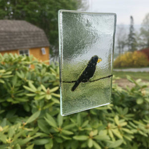 Blackbird on Wire Suncatcher made of fused glass
