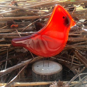 Bright red colourful glass Cardinal bird ornament nestled in reed-like dry grasses. There's a hint of warm sunshine over his face.