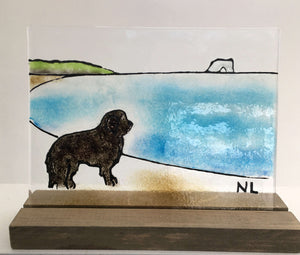 Newfoundland Dog (Glass Art Picture)