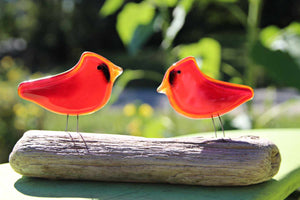 Pair of bright red glass cardinal birds, mounted in Driftwood.