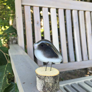 A Grey and White Glass Junco Bird Ornament sits on a garden bench
