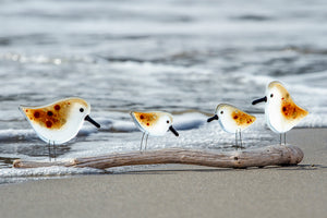 Greetings Card featuring a family of four glass sandpipers on the beach