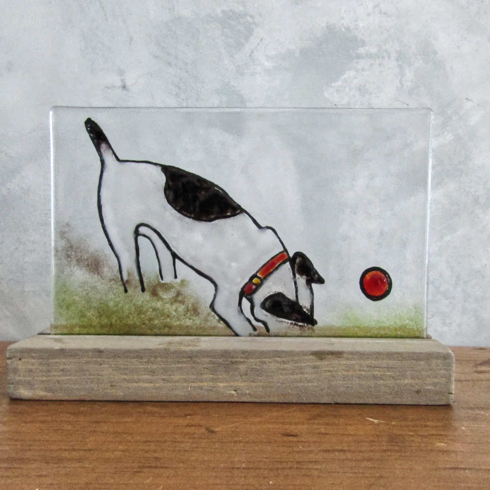 Black and White Terrier Dog Digging for his ball (glass picture)