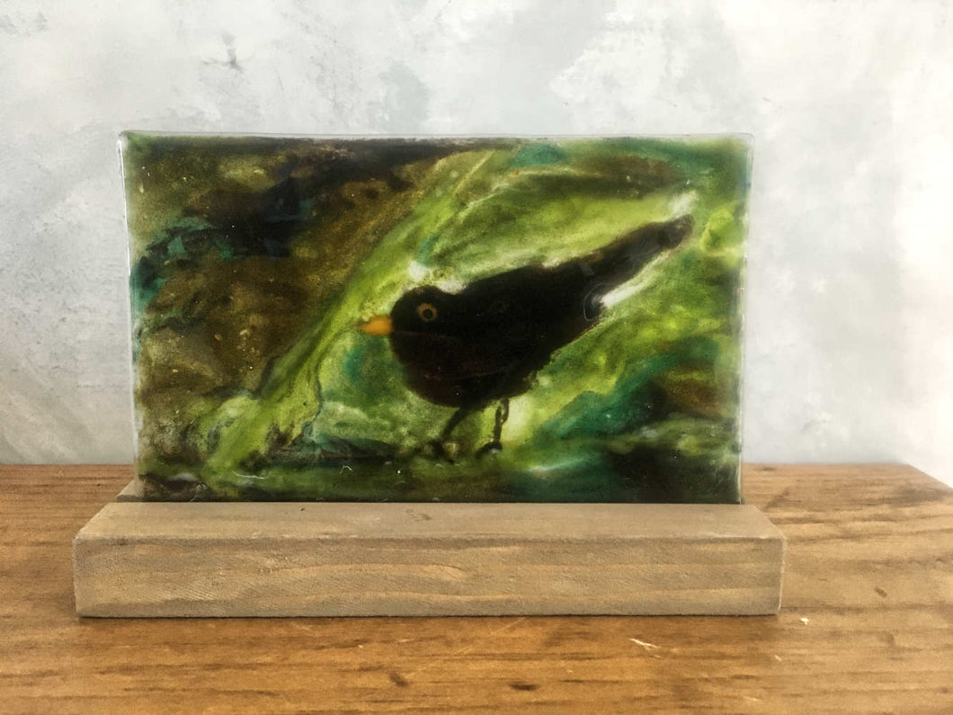 blackbird in a bush - glass picture tile with slotted pine stand