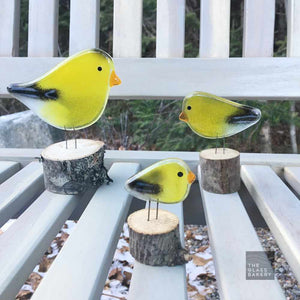 Three charming yellow and black goldfinches made of glass, sit on a garden bench