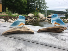 Load image into Gallery viewer, Two glass belted kingfishers sit perched on driftwood with a pond in the background