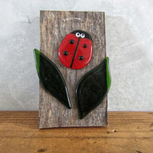 Load image into Gallery viewer, Glass Ladybird on barn wood