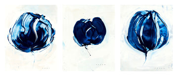 Blue Roses Series