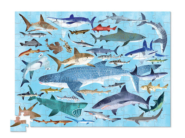 Crocodile Creek 36 Animals Puzzle - Sharks (100 pieces)