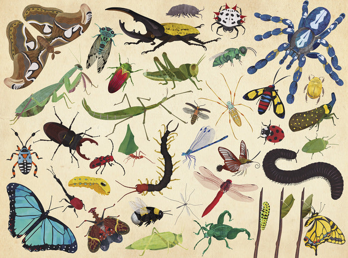 Crocodile Creek 36 Animals Puzzle - Insects (300 pieces)